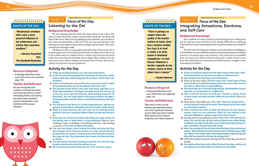 In Focus (Grades K-2) Pages 72 and 73