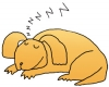 Illustration of sleeping dog